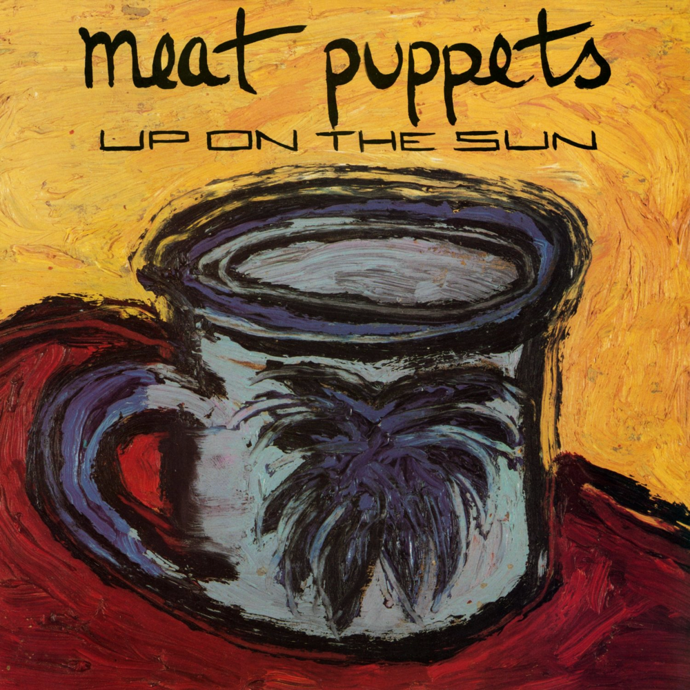 MEAT PUPPETS  Up on the Sun, 1985, Spot, 33:41