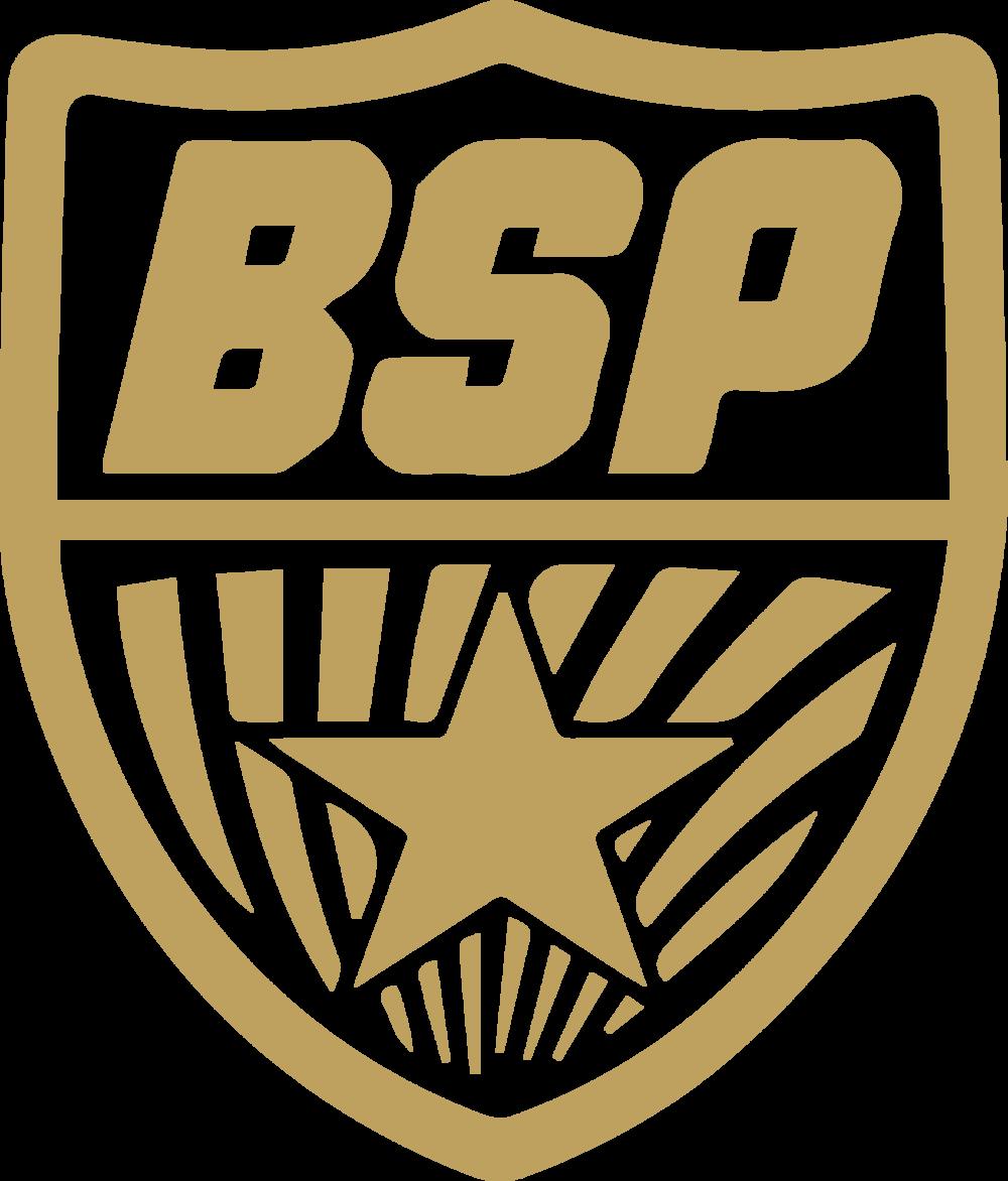 Artboard 1gold bsp logo.png