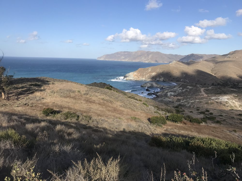 The coastline of Catalina Island.