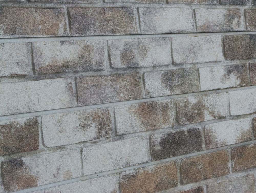 Old Paint brick ss angle.jpg