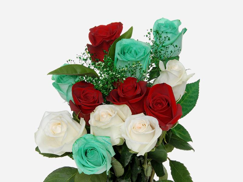 Rainbow Roses 3