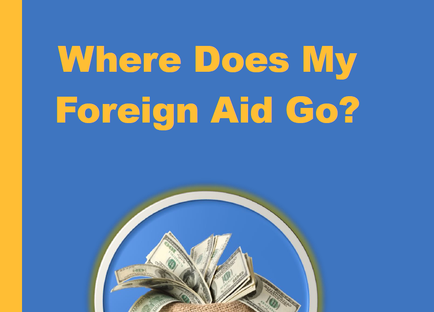White Paper  - A report on foreign aid and donations.