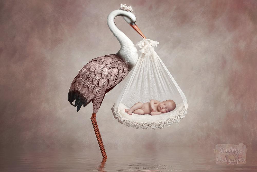 Saskatoon-Newborn-Family-Renditure-Photography-Photographer-Maternity-Pregnancy-Saskatchewan-604FBR.jpg