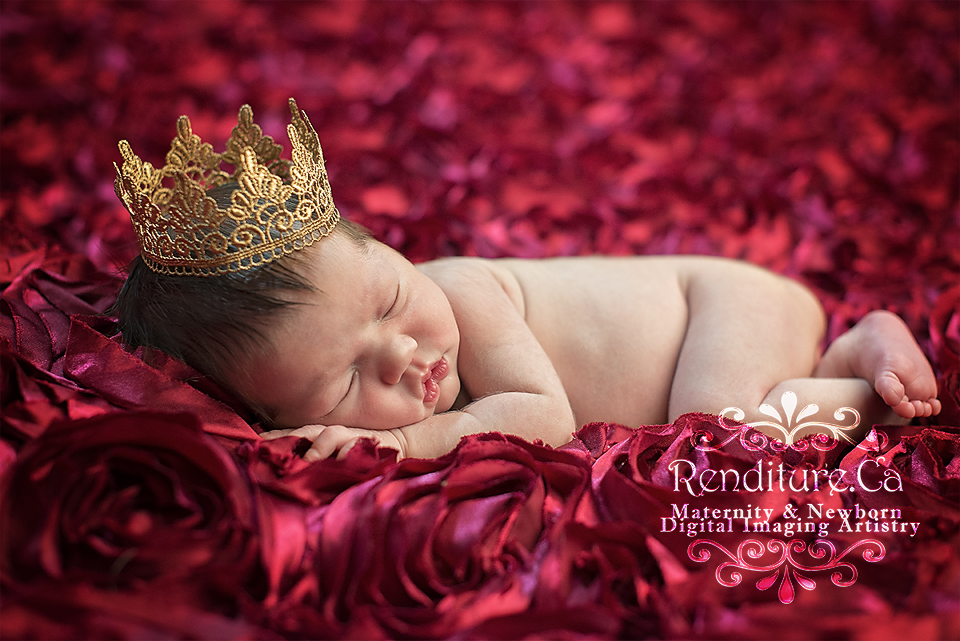 Newborn-Baby-Infant-Child-Photographer-Maternity-Renditure-Saskatoon-Photography-2.jpg