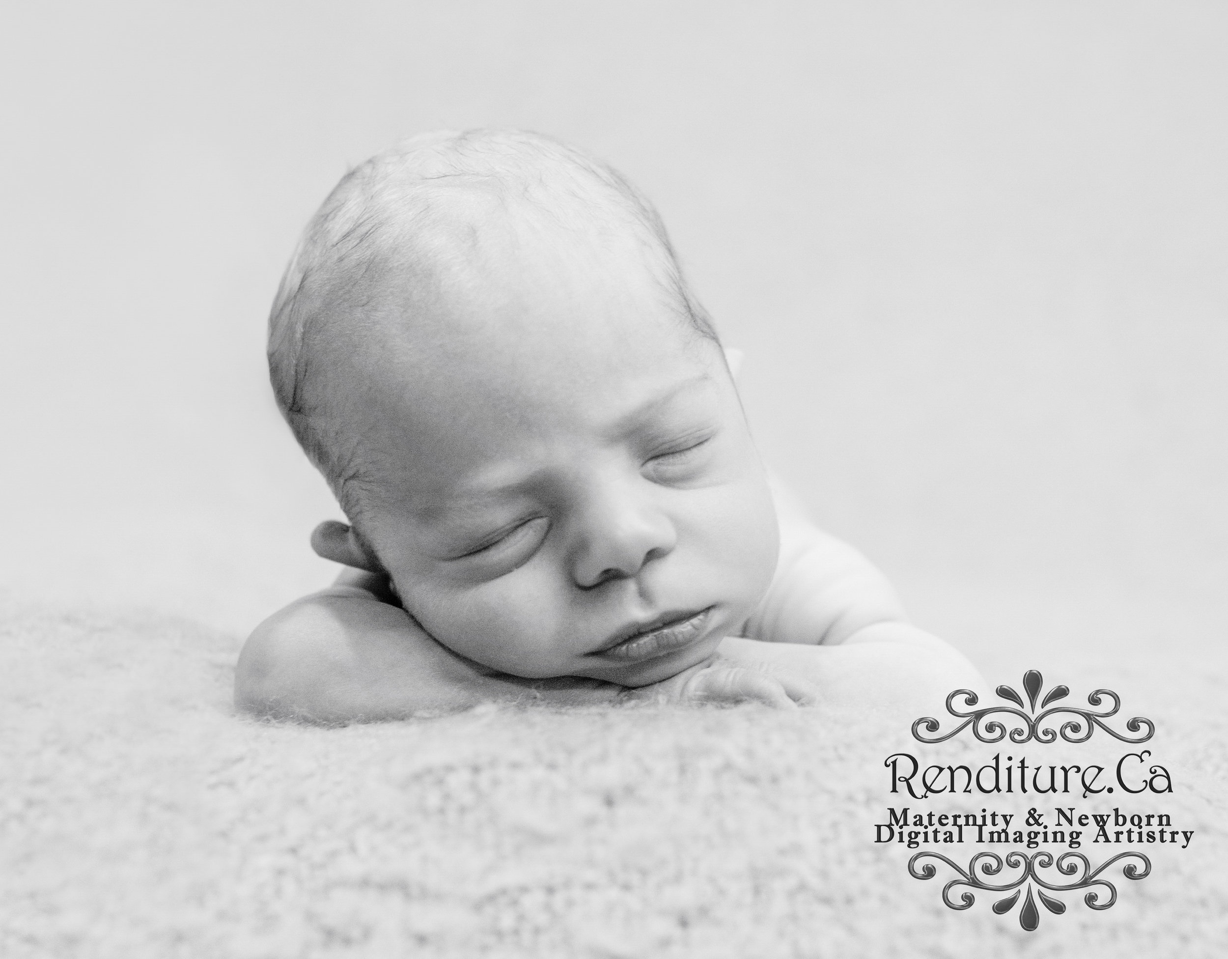 668866243 Renditure - Newborn Photography   Maternity Photography — Renditure ...