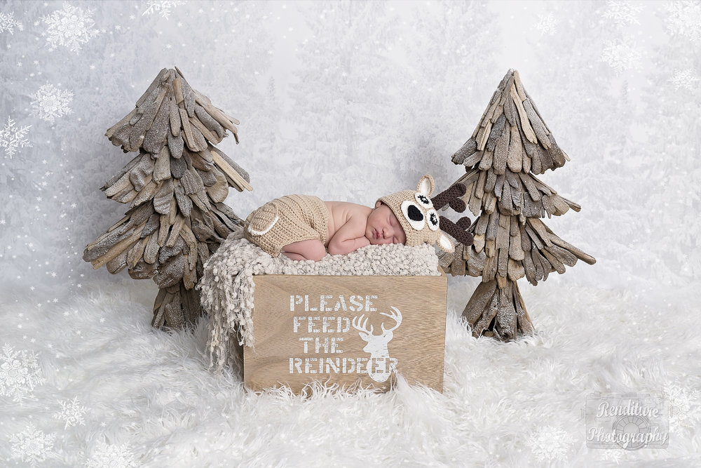 Saskatoon-Newborn-Family-Renditure-Mini-Session-Photography-Photographer-Christmas-Holiday-Saskatchewan-470 FBR.jpg