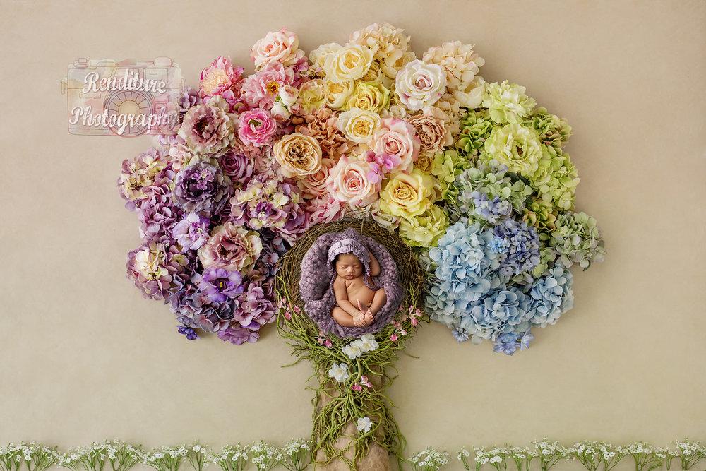 Saskatoon-Newborn-Family-Renditure-Baby-Photography-Photographer-Maternity-Pregnancy-Saskatchewan-373 FBR.jpg