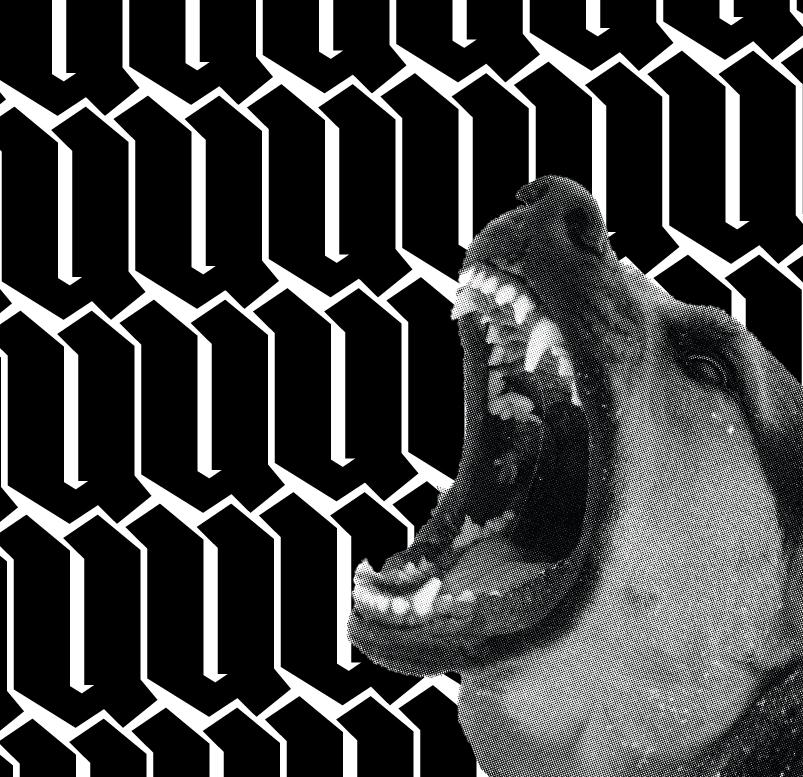 DOG_YELL_01.jpg