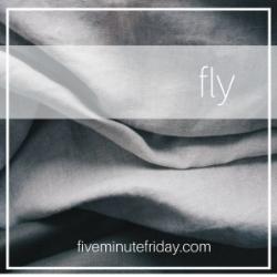 fmf fly.jpg