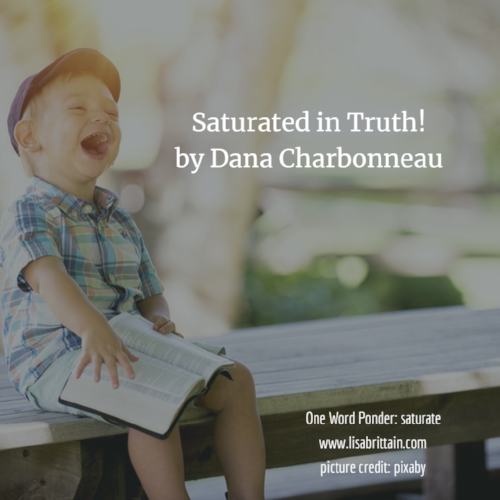 saturated in truth by Dana Charbonneau.png