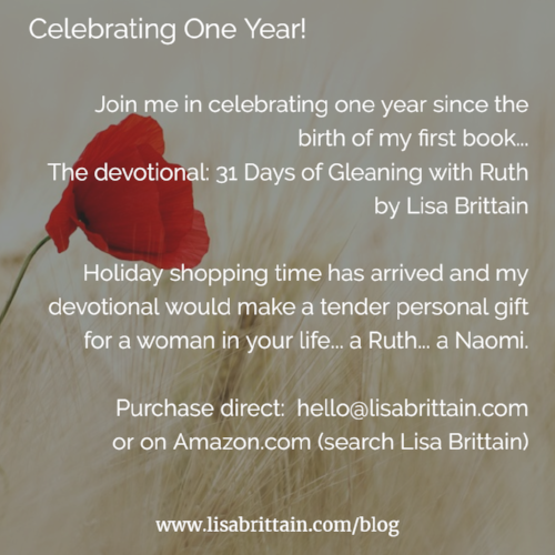 One Year 31 Days of Gleaning with Ruth red poppy..png