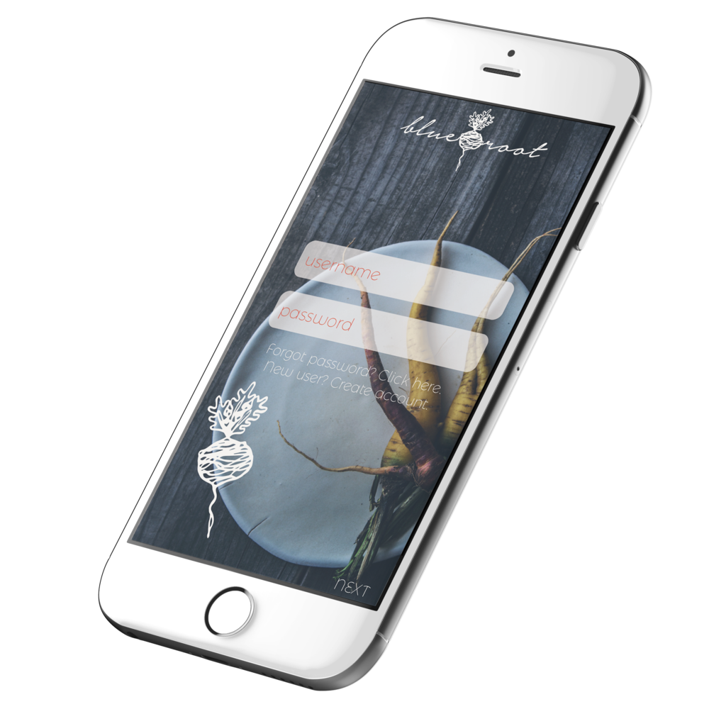 iPhone White-1.png