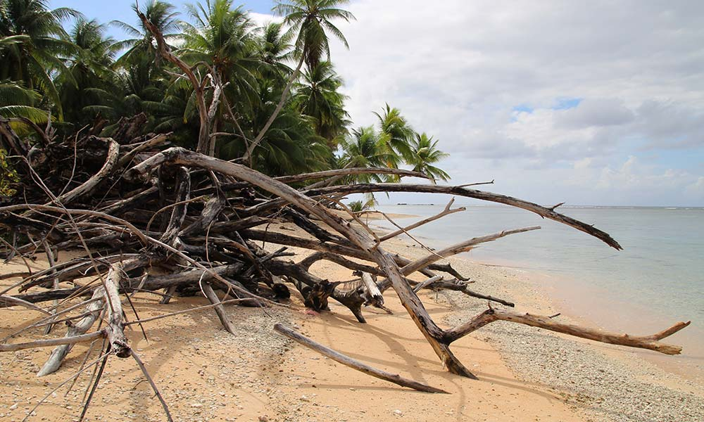 Coast destroyed by Cyclone Pam, Nanumea Island, Tuvalu. Photo: UNDP