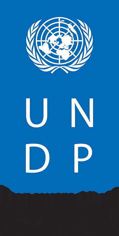 logo-undp-382x757.png