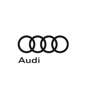 LisaKaySolomon_Audi.jpg