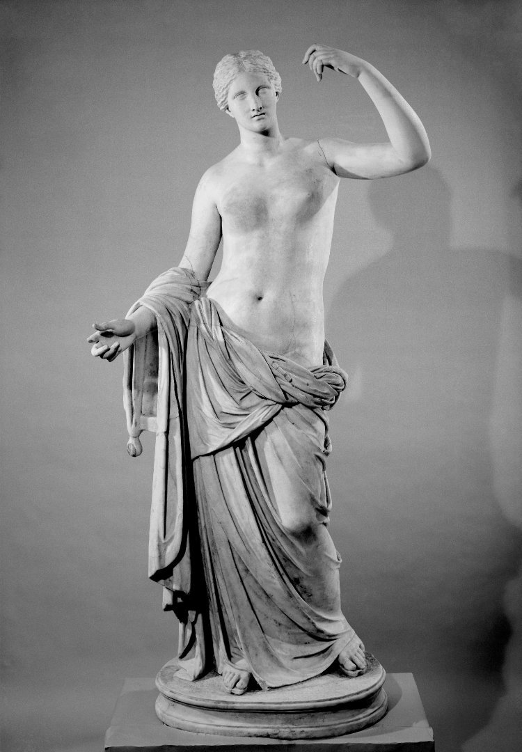 the Townley Venus / waiter  In December 2015, the right thumb of this ancient Roman sculpture was accidentally broken off by an unwitting waiter during a catered event at the British Museum.  The waiter, who was working for one of the external catering companies employed by the museum, got too close to the statue; he bent down underneath it and, upon getting up, bumped into the marble hand, snapping off the right thumb.  Luckily, it was a clean and easily-repaired break, with the restoration carried out in the gallery during off hours.   This was not the first time the statue encountered such an accident. In 2012, a visitor to the museum bumped into the statue, cracking the same hand. As with this most recent incident, the damage was soon repaired.  What's more, the statue's right index finger was broken off before the Venus came to the British Museum and remains so to date, although how this occurred isn't entirely clear.