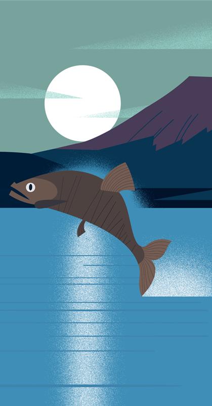 clayton-junior-moncle-salmon.png