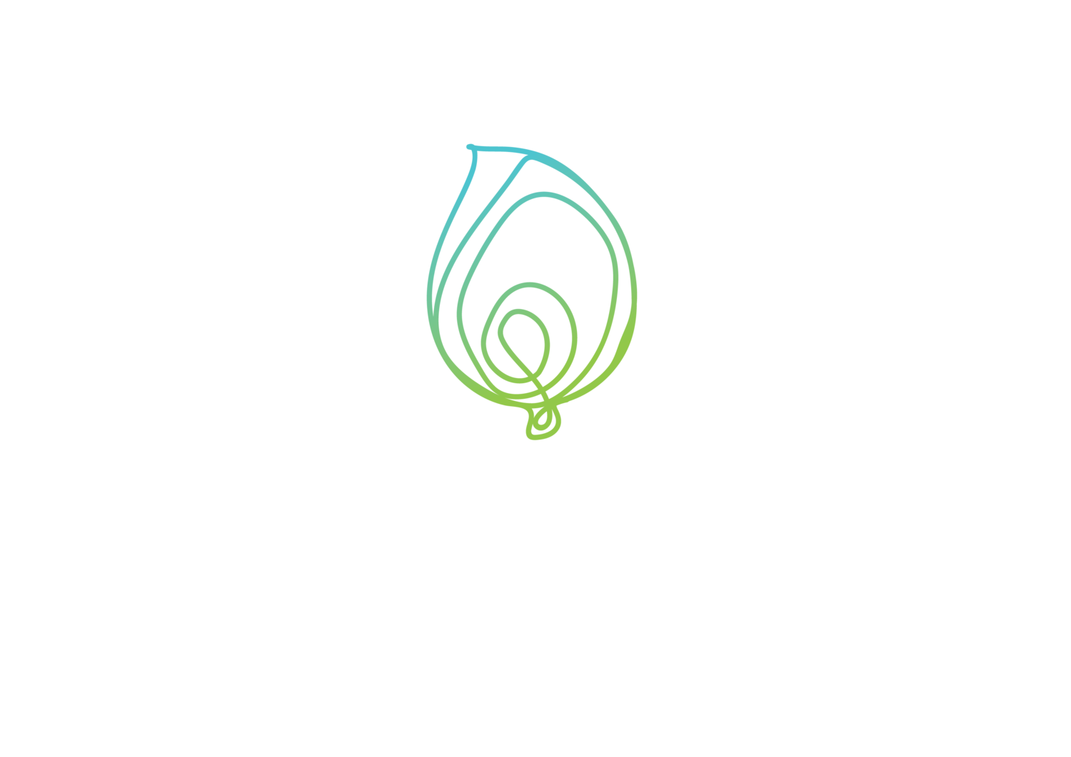 the plastic runner