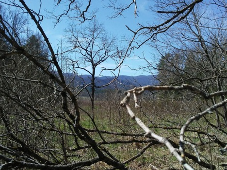 Vanished Schools of Cades Cove - By Delaney Lay