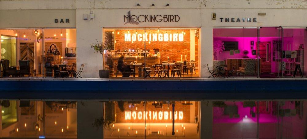 mockingbird-pool.jpg