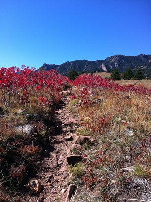 The Homestead Trail in Boulder
