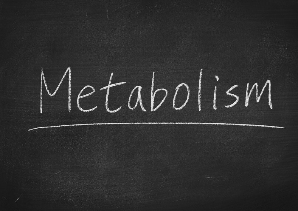 Metabolism on chalk board.jpg
