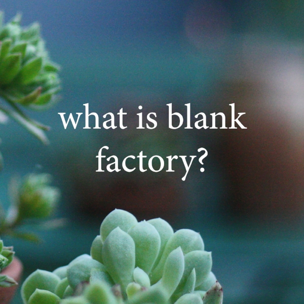 what is blank factory.jpg