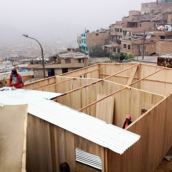 Reimagine_Web_PreFabHomes_Thumbs_WallsRoof.jpg