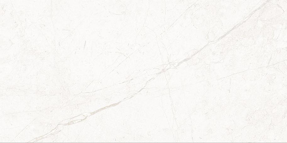 White |  In Stock   EX.PS.WHT.1224.MT