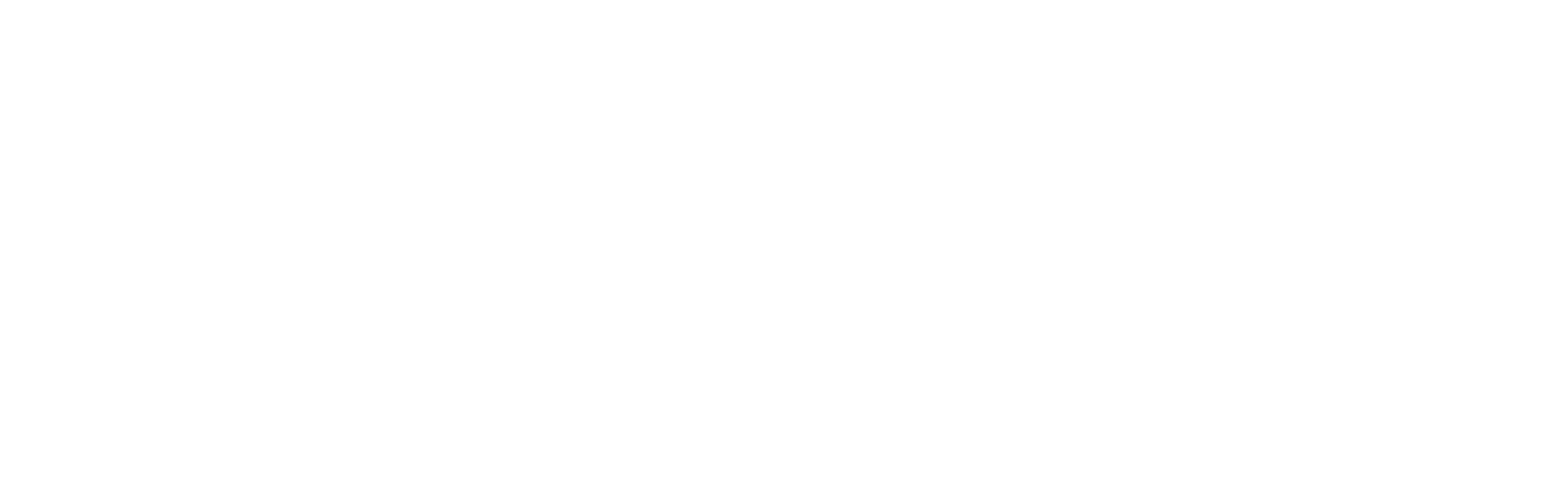 The Packard Institute