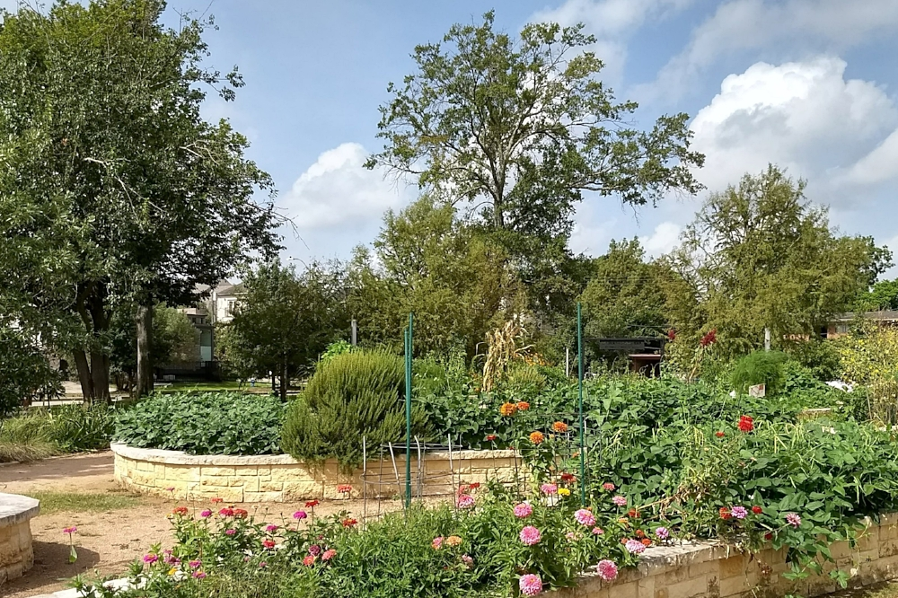 neartown-mandell-park-meredith-gardens.jpg