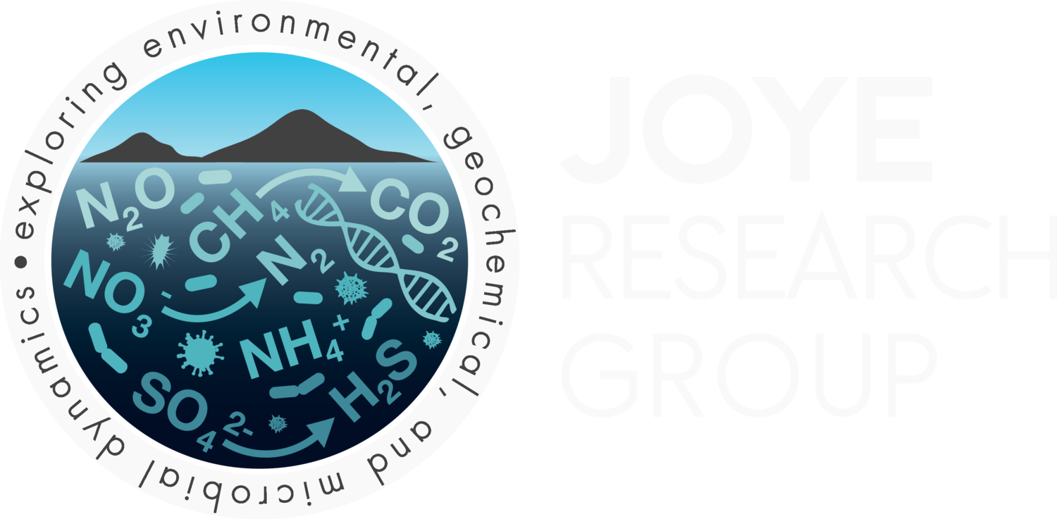 Joye Research Group