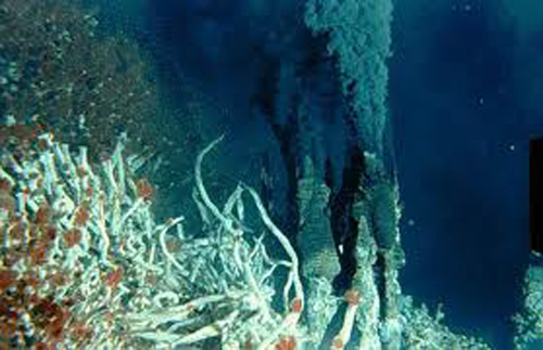 Black smoker with Riftia tube worms