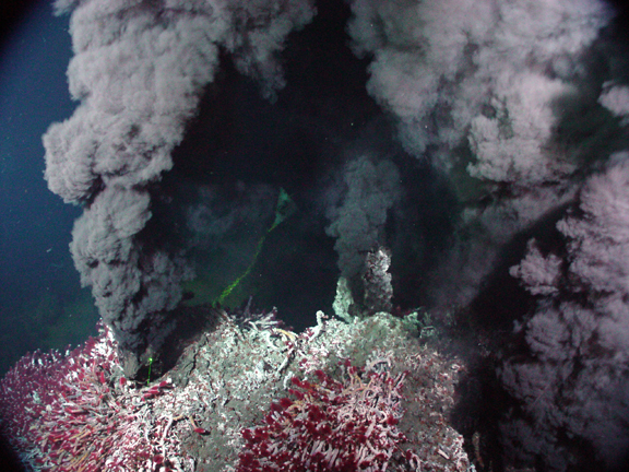 Black smoker with Riftia tube worms (photo courtesy of NOAA)