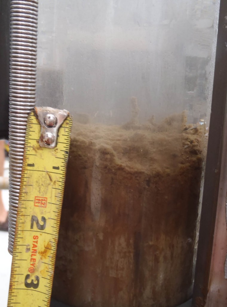 A layer of oil on a sediment core (from a site NE of the wellhead)