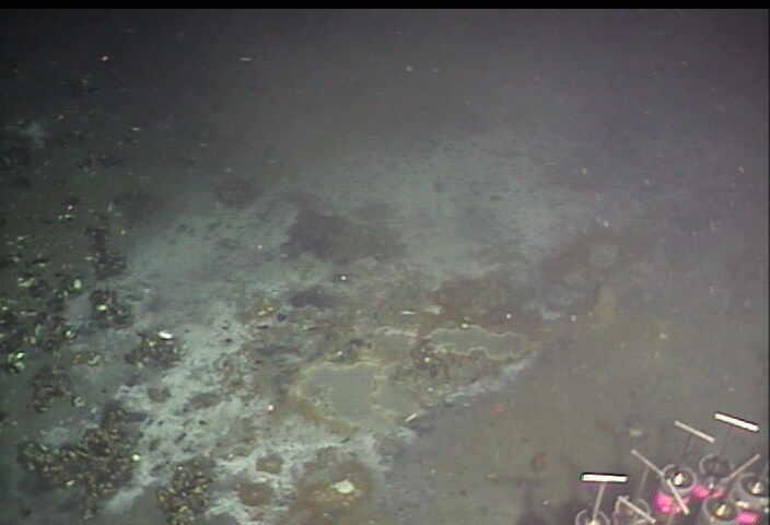 Seafloor fumarole