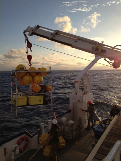 Moving an ECOGIG lander on the RV Pelican at sunset. Photo by Beth Orcutt.