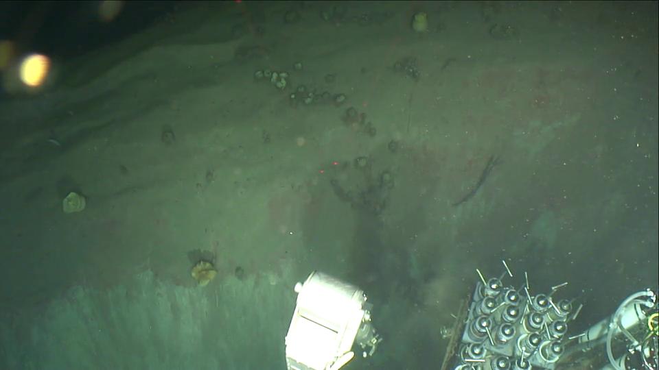 10-sponge gardon atop a diapir.png