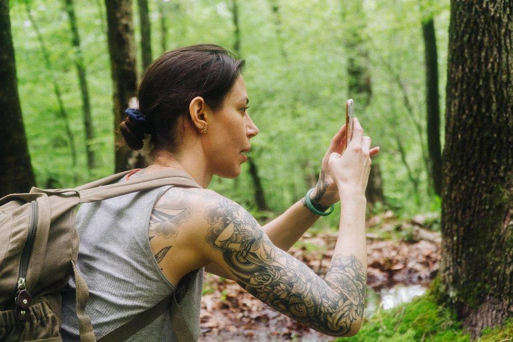 Reeves Brook Loop Hiking Adventure 3/4