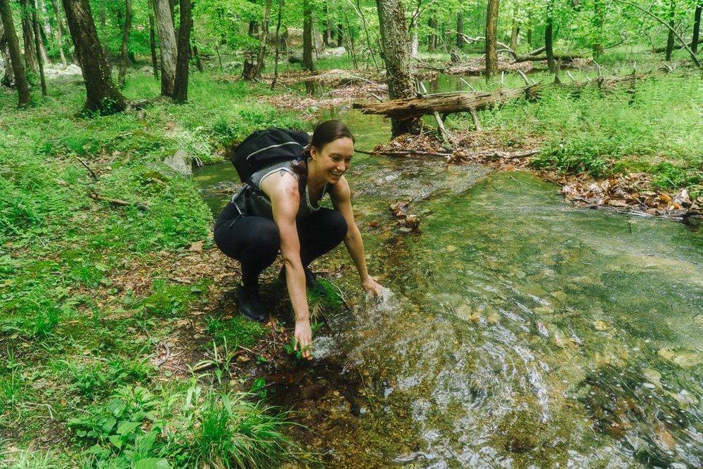Reeves Brook Loop Hiking Adventure 4/4