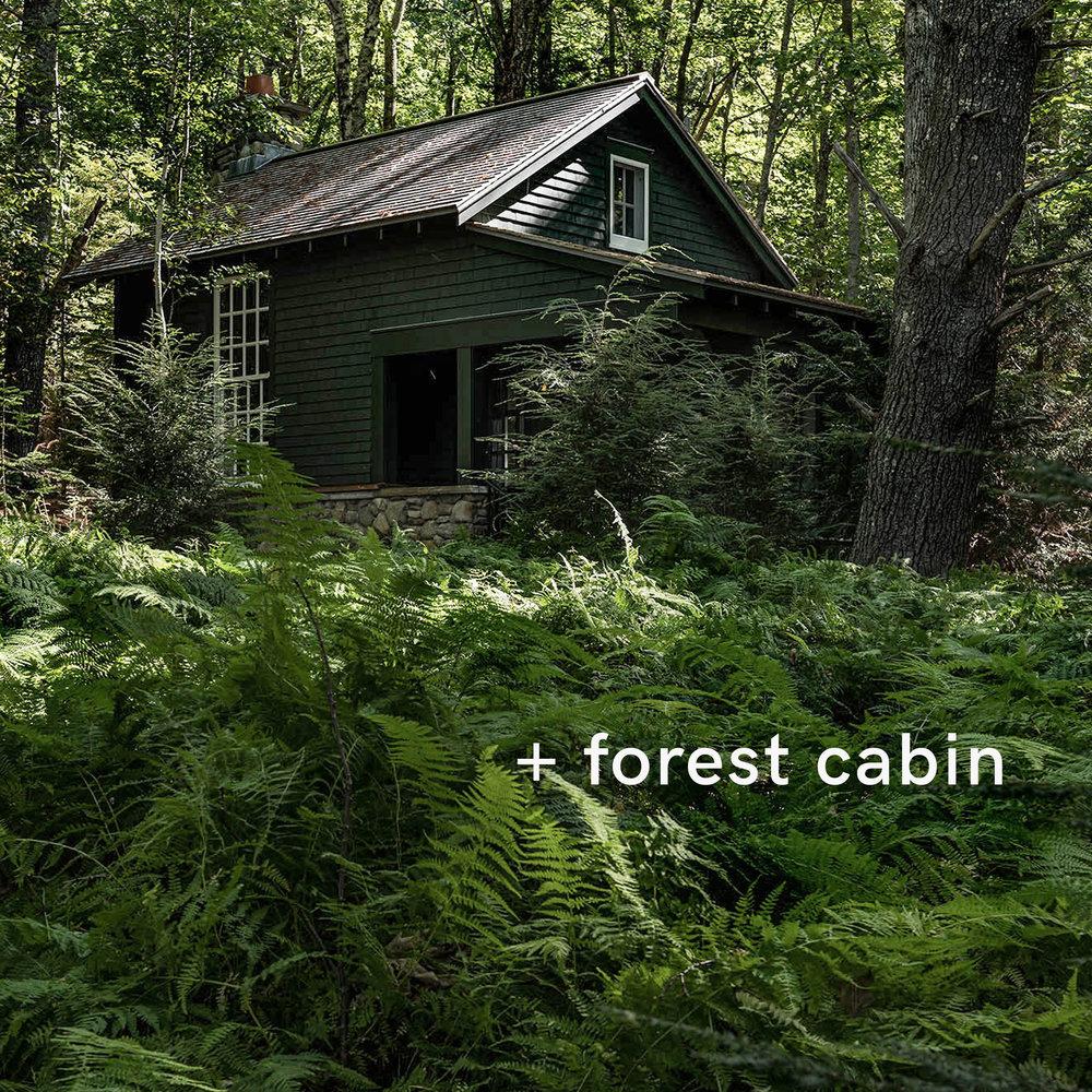 frest cabin.jpg