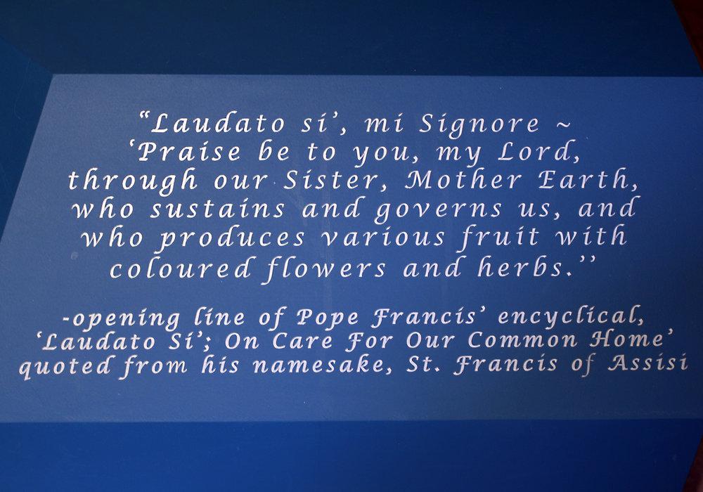 pope_church_text_laudato.jpg
