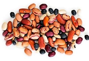 beans shot.png