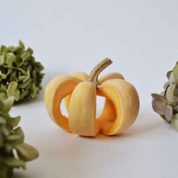Mini pumpkin. Perfect if you don't want a ginormous pumpkin going squidgy on the windowsill.