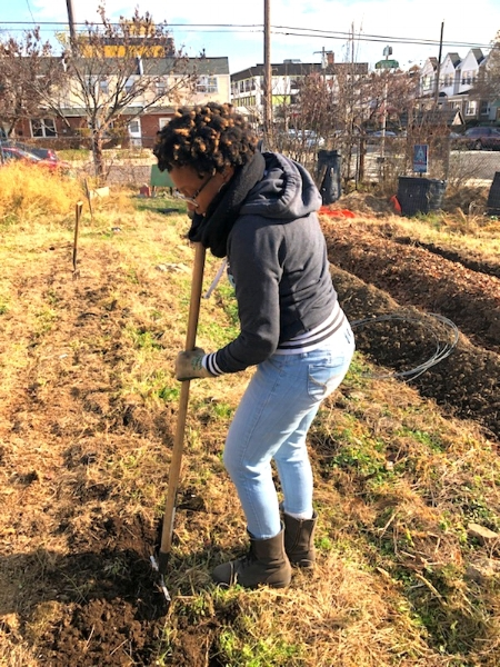 Volunteering at a local farm in West Philly