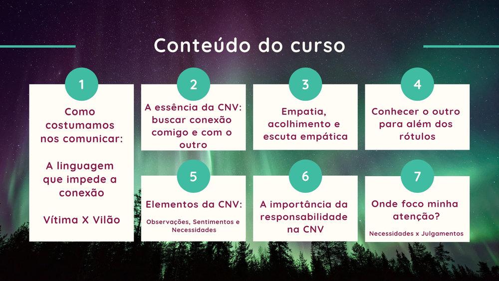 The Curriculum.jpg