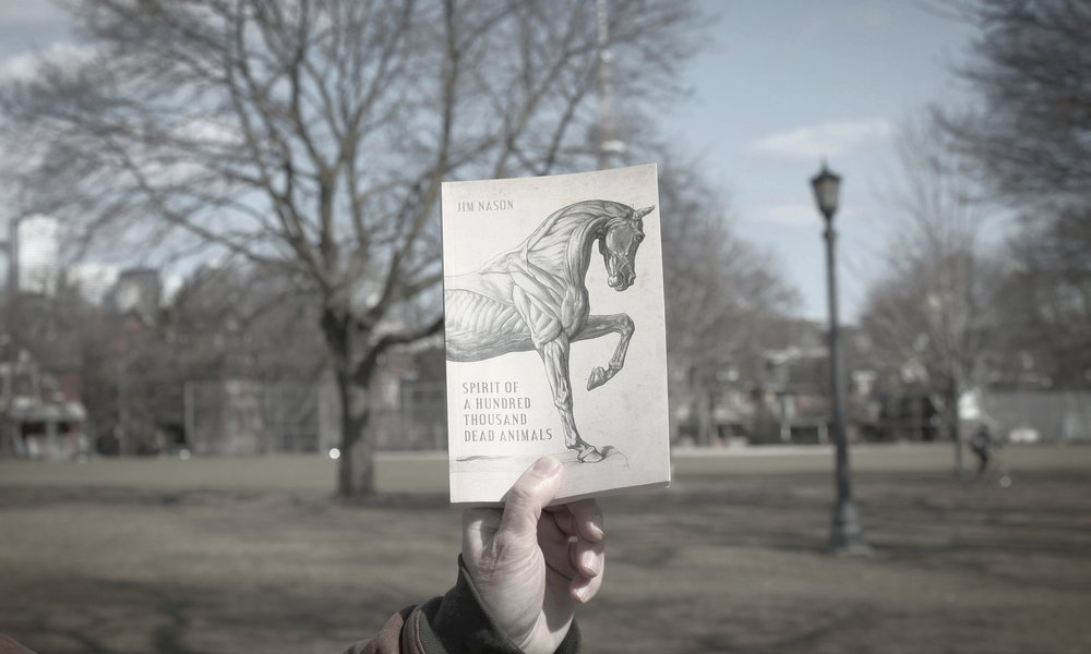 Spirit of a Hundred Thousand Dead Animals - His recently released novel, Spirit of a Hundred Thousand Dead Animals, features a homeless parent, Jack Layton's funeral, and a queer artist wrestling with the decision to stay in the small town where he was born or move to the big city where he is more likely to find others like himself.