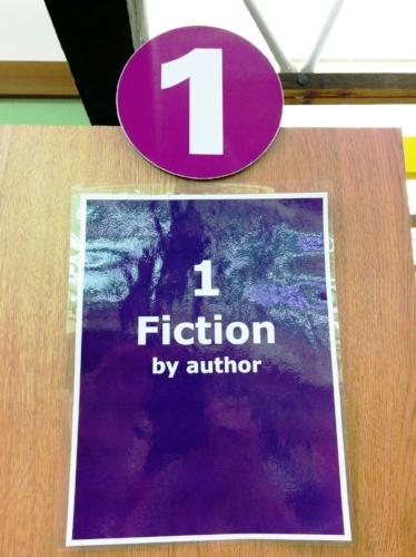 fiction1-sign-cindy-fazzipic.jpg