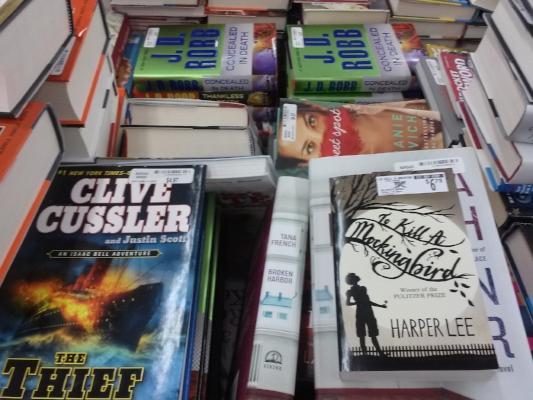 books-9-2015-cindyfazzipic.jpg
