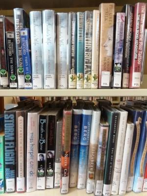 books8-cindyfazzipic.jpg